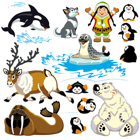 set with cartoon animals of arctic Isolated pictures for little kids