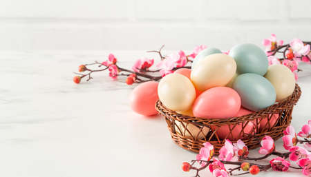 Photo pour Close up of colorful Easter eggs in the basket with pink plum flower on bright white wooden table background. - image libre de droit