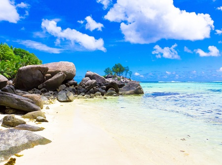 Beach Nature Beauty