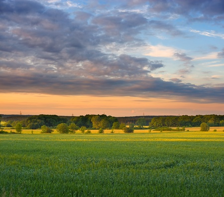 Summer evening of a rural landscape in the middle of germany