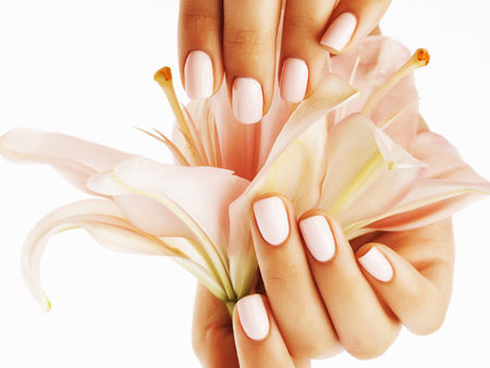 Photo pour beauty delicate hands with manicure holding flower lily close up isolated on white perfect shape - image libre de droit