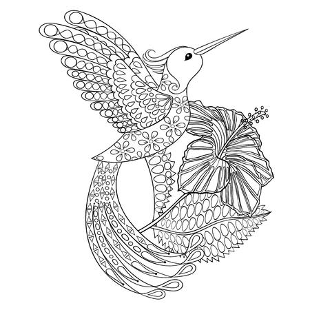 Coloring page with Hummingbird in hibiskus, zentangle illustartion ...