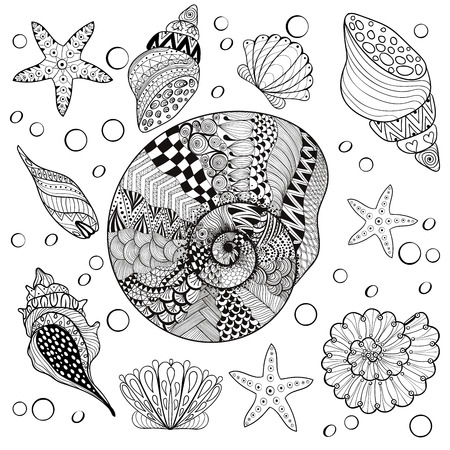 Illustration pour Vector set Sea Shells, zentangle shelsl for adult anti stress Coloring pages, patterned sea shell, cockleshell illustration for tattoos with high details. hand drawn sketch, Artistically decorative henna print for t-shirt - image libre de droit