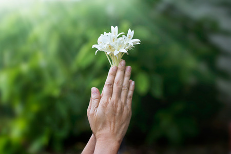 Photo for woman praying with white flower in hands on nature background - Royalty Free Image