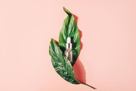 Foto de Bottle with natural serum with vitamins on a pink background. Cosmetic procedures for the face - Imagen libre de derechos