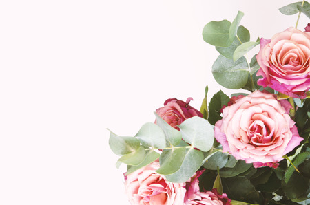 Photo for Flowers composition. Roses flowers and branch eucalyptus on white background. Top view, copy space. - Image - Royalty Free Image
