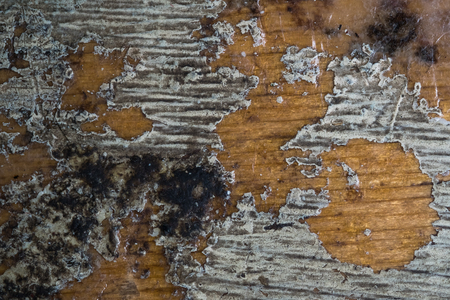 Wooden board white old style abstract background objects. In course of time the paint of white tone peeled off the old planks and cracked