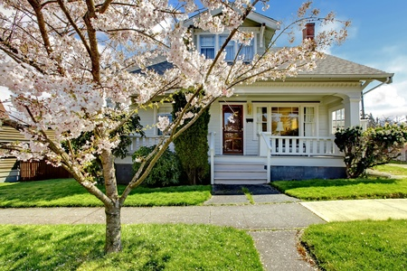 Small old white house with a blooming cherry tree and green grass.