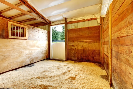 Horse farm empty stable interior with wood walls.