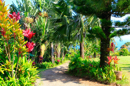Photo for A tropical garden with flowers and palm trees overlooking the ocean with blue sky. Garden Of Eden, Maui Hawaii - Royalty Free Image