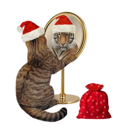 Foto de The beige cat in a red Santa Claus hat with a bag of Christmas gifts looks at his reflection in the mirror. It sees a tiger there. White background. Isolated. - Imagen libre de derechos