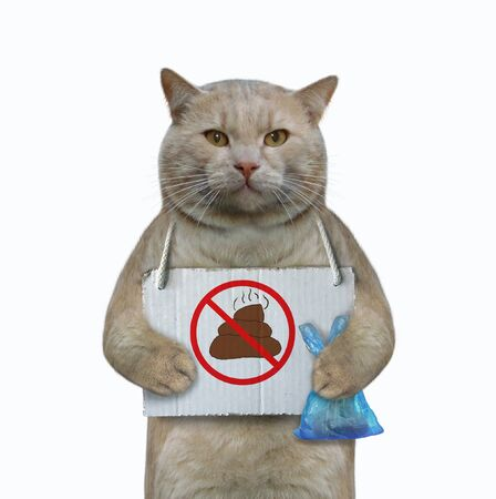 Foto de The cat has a sign around his neck that says  no pooping . He holds a blue plastic bag with poop. White background. Isolated. - Imagen libre de derechos