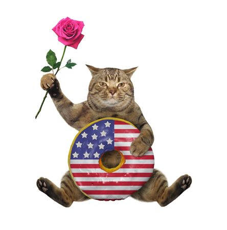 Photo pour The beige cat patriot is sitting with a big american donut and a pink rose. White background. Isolated. - image libre de droit