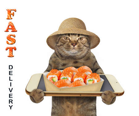 Photo pour The beige cat in a straw hat takes a paper box of sushi from a smartphone screen. Fast delivery. White background. Isolated. - image libre de droit
