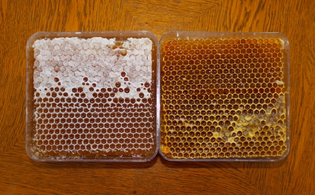 Two plasic boxes with honey in honeycomb on wooden table