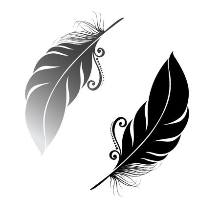 Ilustración de Peerless Decorative Feather   - Imagen libre de derechos