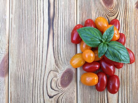 Photo for Cherry tomatoes and basil leaves on wooden background. Selective focus. The concept of consumption of local products. Copy space. - Royalty Free Image