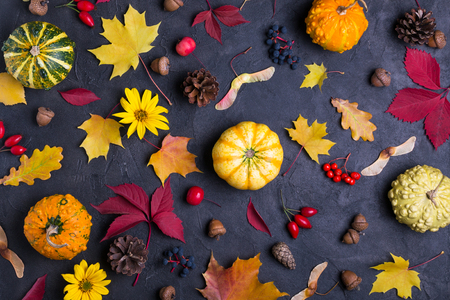 Foto de Autumn leaves and pumpkins over  dark concrete background Mockup for seasonal offers and holiday post card, top view - Imagen libre de derechos