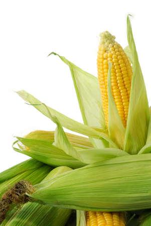 Foto für Fresh corn cobs closeup - Lizenzfreies Bild