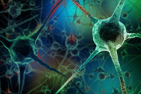Photo pour Realistic rendering of neurone  on the green background - image libre de droit