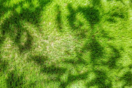 Foto de Bright green plastic grass as garden and yard decor - Imagen libre de derechos