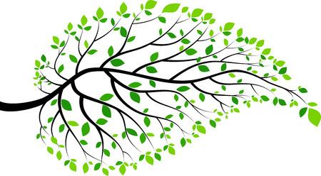 Illustration pour Illustration of green leaves and twigs - image libre de droit