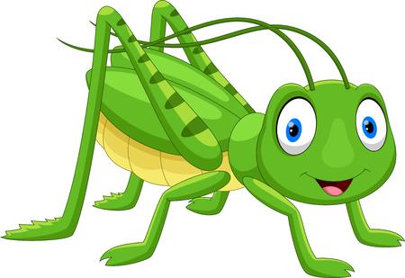 Cute grasshopper cartoon isolated on white background