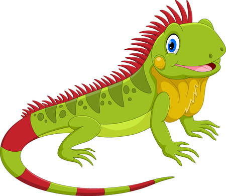 Vector illustration of cute iguana cartoon isolated on white background