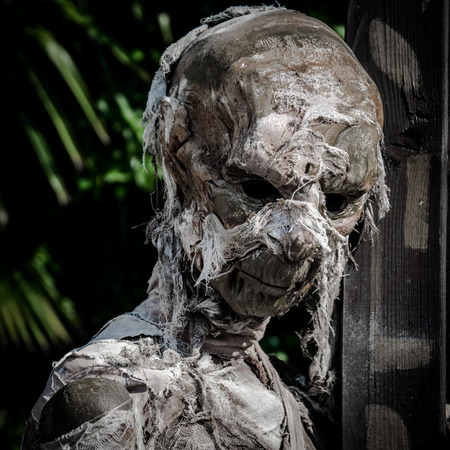Mummified corpse wrapped in a bandage worn down and rumpled.