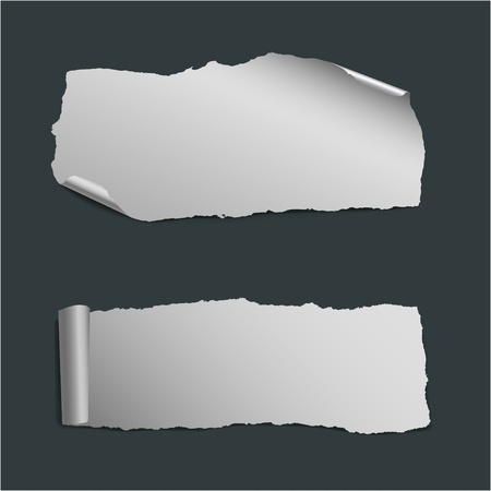 collection of  white vector pieces of paper
