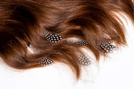 Photo pour Mottled feathers lie on brown long womens hair on white background - image libre de droit