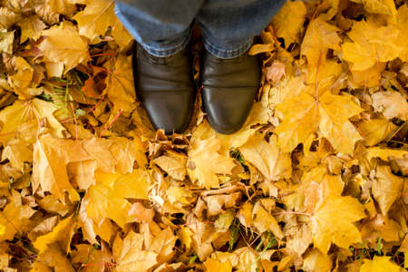 Photo pour Fall, autumn, leaves, legs and shoes. Conceptual image of legs in boots on the autumn leaves. Feet shoes walking in nature - image libre de droit