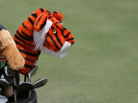 golf clubs and tiger cover