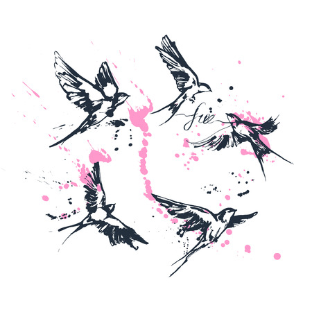 Ilustración de Vector illustrations of a dynamic flying swallow birds set. Modern splashing ink sketchy painting artwork. Blue drawing with calligraphy flourishing label free and pink splashes. Perfect tattoo or t-shirt print. - Imagen libre de derechos