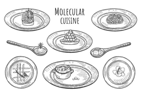 Illustration pour Vector illustration of molecular cuisine dishes. Extravagant fantasy food served on the plates and spoons. - image libre de droit