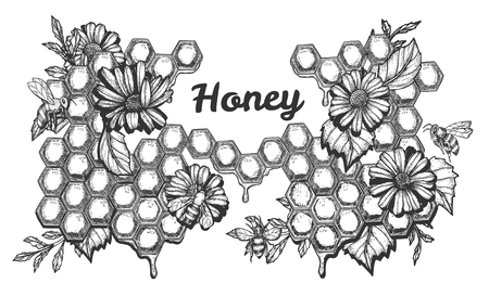 Vector illustration of honey set. Sweet composition with blooming flowers and working bees on honeycombs background and lettering. Vintage hand drawn style.
