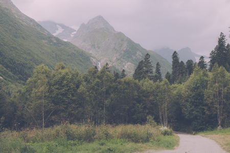 Photo pour Panorama view of deep forest scene in national park of Dombay, Caucasus, Russia. Summer landscape, sunshine weather and sunny day - image libre de droit