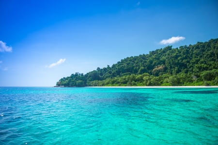 Beautiful Blue Sea With Tropical Forest And White Sandy Beach