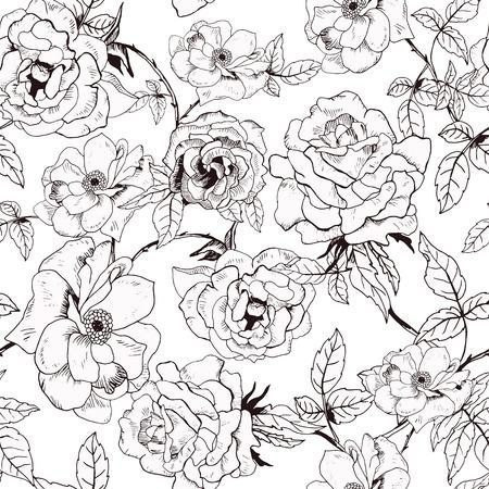 Ilustración de Abstract seamless pattern with hand drawing isolated white roses. Vector illustration. - Imagen libre de derechos