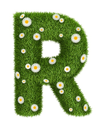 Letter R photo realistic grass font with flower camomile
