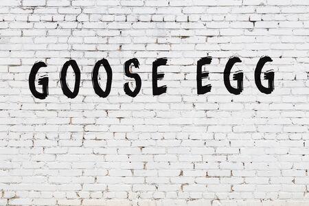 Photo pour White brick wall with inscription goose egg handwritten with black paint - image libre de droit