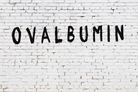 Photo pour Word ovalbumin written with black paint on white brick wall. - image libre de droit