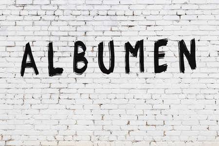 Photo pour Inscription albumen written with black paint on white brick wall. - image libre de droit