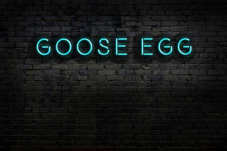 Photo pour Neon sign with inscription goose egg against brick wall. Night view - image libre de droit