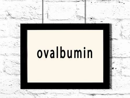 Photo pour Black wooden frame with inscription ovalbumin hanging on white brick wall - image libre de droit