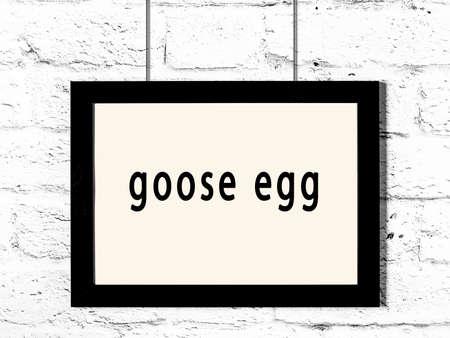 Photo pour Black wooden frame with inscription goose egg hanging on white brick wall - image libre de droit