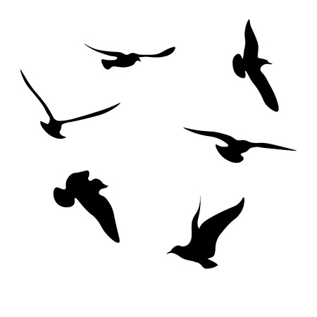 Black Seagulls Silhouettes Collection