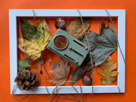 Foto de Autumn still life top view of white frame with vintage flashlight on autumn leafs, pine cone and chestnuts - Imagen libre de derechos