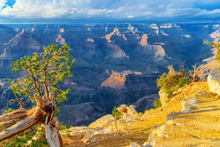 Amazing natural geological formation - Grand Canyon in Arizona, Southern Rim. USA.