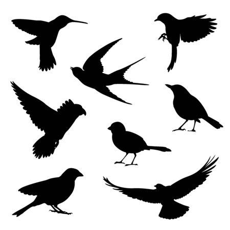 Illustration for bird silhouette illustration set - Royalty Free Image